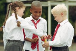Evidence Brief 1: Supporting physical activity in schools