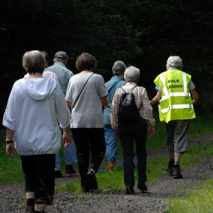 Walking_for_Health_in_Epsom-5Aug2009_cropped