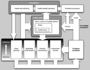 A systems map of research translation